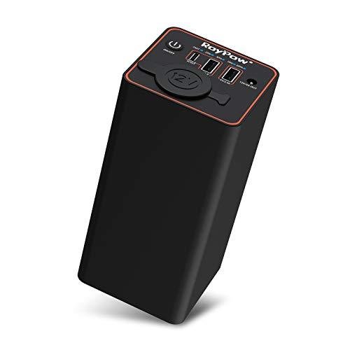 RoyPow Cargador portátil de 30 W PD USB-C con toma de mechero de 12 V, batería externa para...